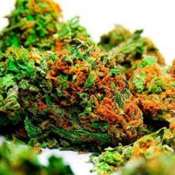 weed 3